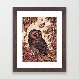 Tawny Owl Pink Framed Art Print