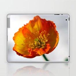 Orange Poppy in February 1 Laptop & iPad Skin