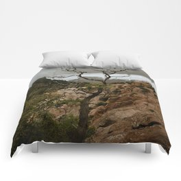 Colorful Mountaintop View with Withered Tree - Big Bend Comforters