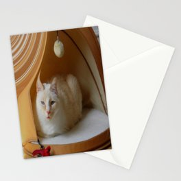 My cat is my zen master Stationery Cards