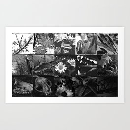 Greyscale collage Art Print