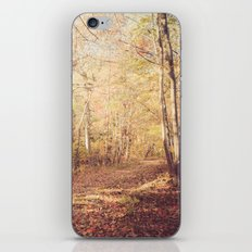 New England Autumn iPhone & iPod Skin