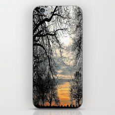 Calm Before An Evening Storm iPhone & iPod Skin