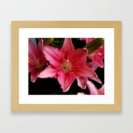 A Lily for Lily Grissom Framed Art Print