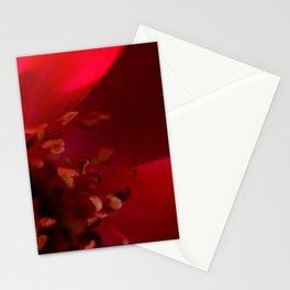 Anna's Mambo Stationery Cards