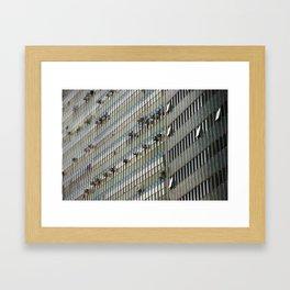 Windows 02 Framed Art Print