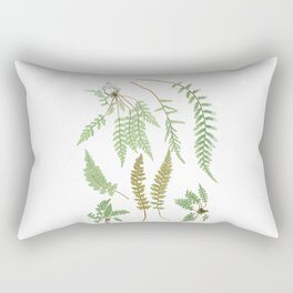 Fern Plants Illustration - Vintage Rectangular Pillow