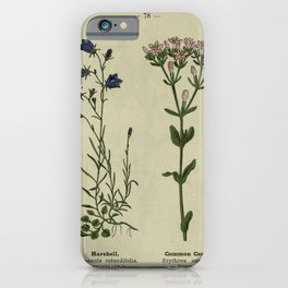 Flower Harebell Common Centaury campanula rotundifolia erythraea centaurium19 iPhone Case