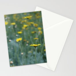 Little Yellow Daisy Stationery Cards