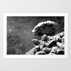 blackshells Art Print