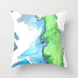 Map of FL Throw Pillow
