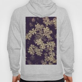 Blazing in Gold and Quenching in Purple Hoody