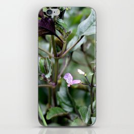 Purple Chlorophyll iPhone Skin
