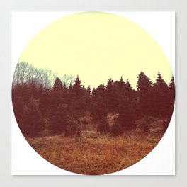Trees. Canvas Print