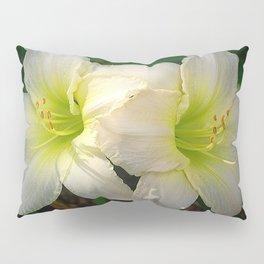 Glowing white daylily flowers - Hemerocallis Indy Seductress Pillow Sham