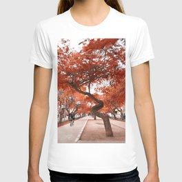 Banzay T-shirt