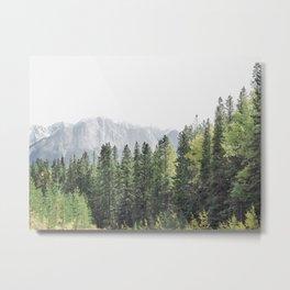 Treeline - Nature and Landscape Photography Metal Print
