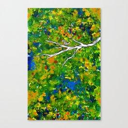 Bird out the Bush Canvas Print