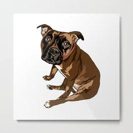 Avery the Boxer Pug Cross Metal Print