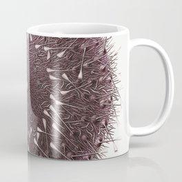 Sea urchin  from Resultats des Campagnes Scientifiques by Albert I Prince of Monaco (1848-1922) Coffee Mug