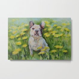 Frenchie Cute French Bulldog puppy portrait Bully Dog Pet in the meadow Yellow Flowers Painting Metal Print