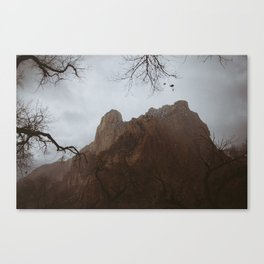 Past the emerald pools turnoff. Canvas Print