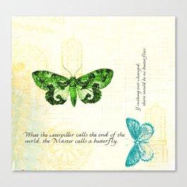 Butterfly Pillow Canvas Print