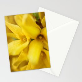 Yellow Explosion Stationery Cards