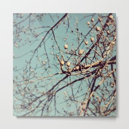 Mountain Nature Metal Print