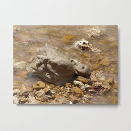 Rocks In The Current Metal Print