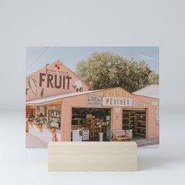 fruit stand Mini Art Print
