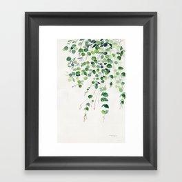 Eucalyptus Watercolor Framed Art Print