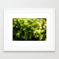 moss Framed Art Prints featuring Moss by Michelle McConnell