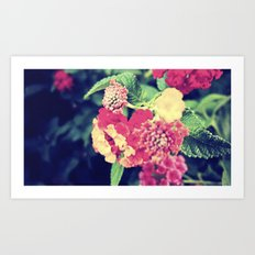 oh to be a bee Art Print