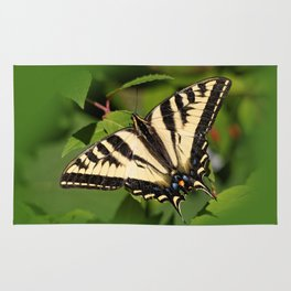 Western Tiger Swallowtail in the Garden Rug