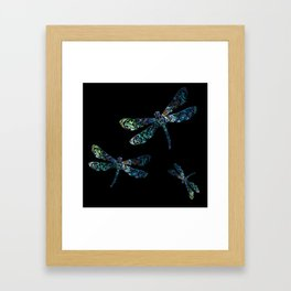 Dragonfly's Framed Art Print