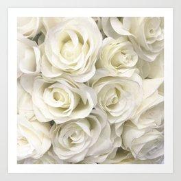 Ivory White Roses Art Print