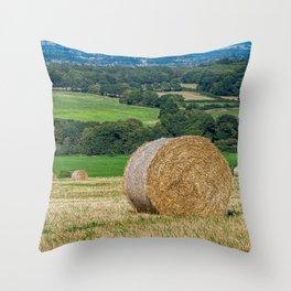 Bale. Throw Pillow