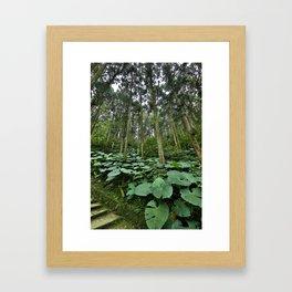 Forest Blanket Framed Art Print