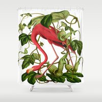 flamingo Shower Curtains featuring Flamingo by Fifikoussout