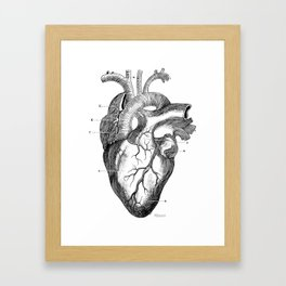 Anatomic hearth engraving Framed Art Print