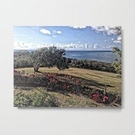 Windswept Tree, Canegarden, St. Croix, USVI Metal Print