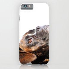 boxer dog portrait iPhone 6s Slim Case