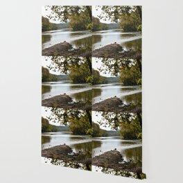 Hanging Rock & Peavine Hollow Series, No. 1 Wallpaper