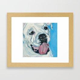 Atlas the Boxer Framed Art Print