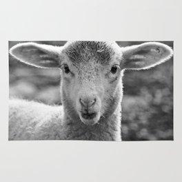 Lamb's portrait Rug