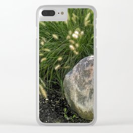 A Rock And Some Cattails Clear iPhone Case