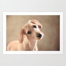 Dog puppy Art Print