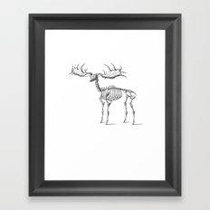 Dead Moose Framed Art Print
