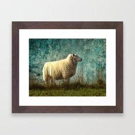 Vintage Sheep Framed Art Print